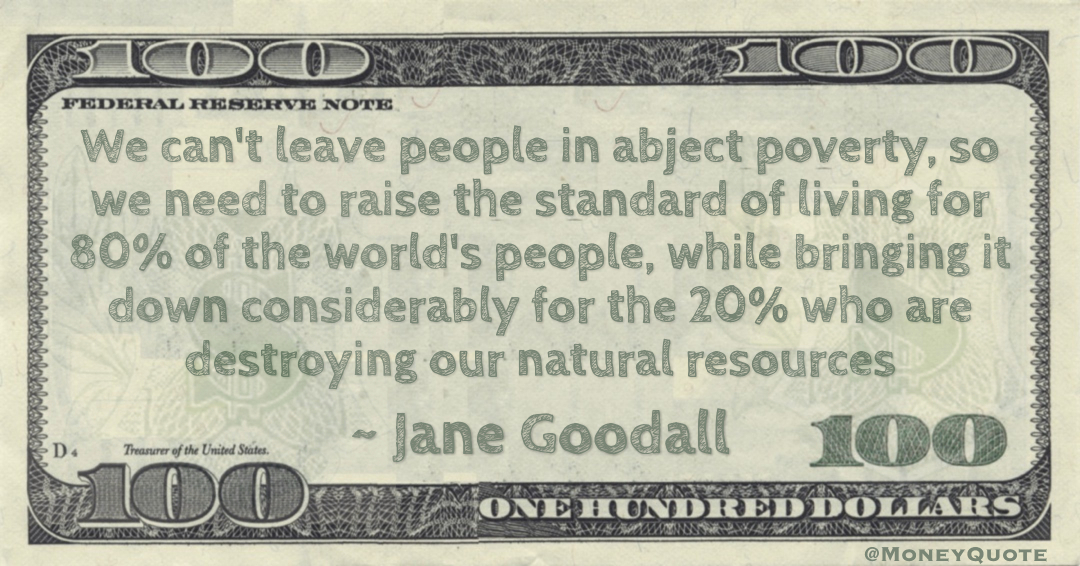 We can't leave people in abject poverty, so we need to raise the standard of living for 80% of the world's people, while bringing it down considerably for the 20% who are destroying our natural resources Quote