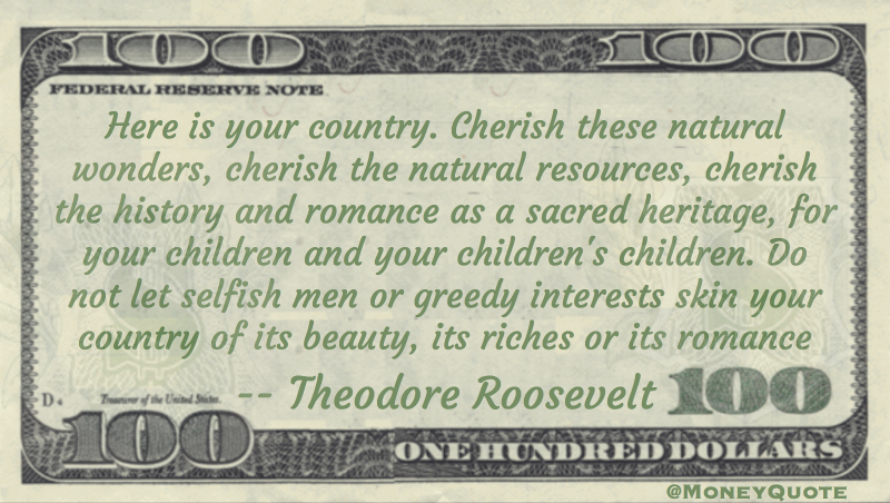 Theodore Roosevelt Greed Skinning Riches Money Quotes Dailymoney